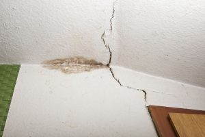odstranění plísně a dezinfekce zdi