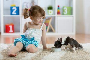 ako vyzrieť na detské farbičky vyliate na koberci