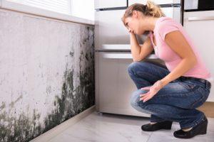 Zdravotní problémy plíseň v domě