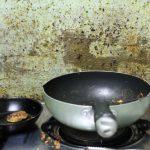 Prevence a dezinfekce plísní