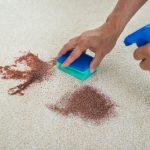 Jak odstranit skvrny z koberce